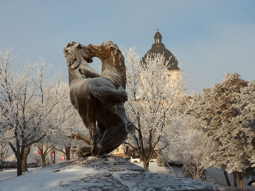 Flashback Friday: Fighting Stallions Memorial