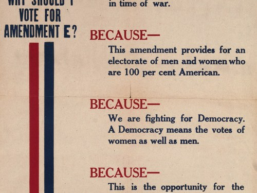 Voting through a Pandemic